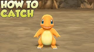 Pokemon Lets Go Pikachu and Eevee - How To Catch Charmander