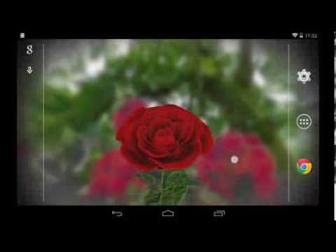 3D Rose Live Wallpaper Free   Apps on Google Play