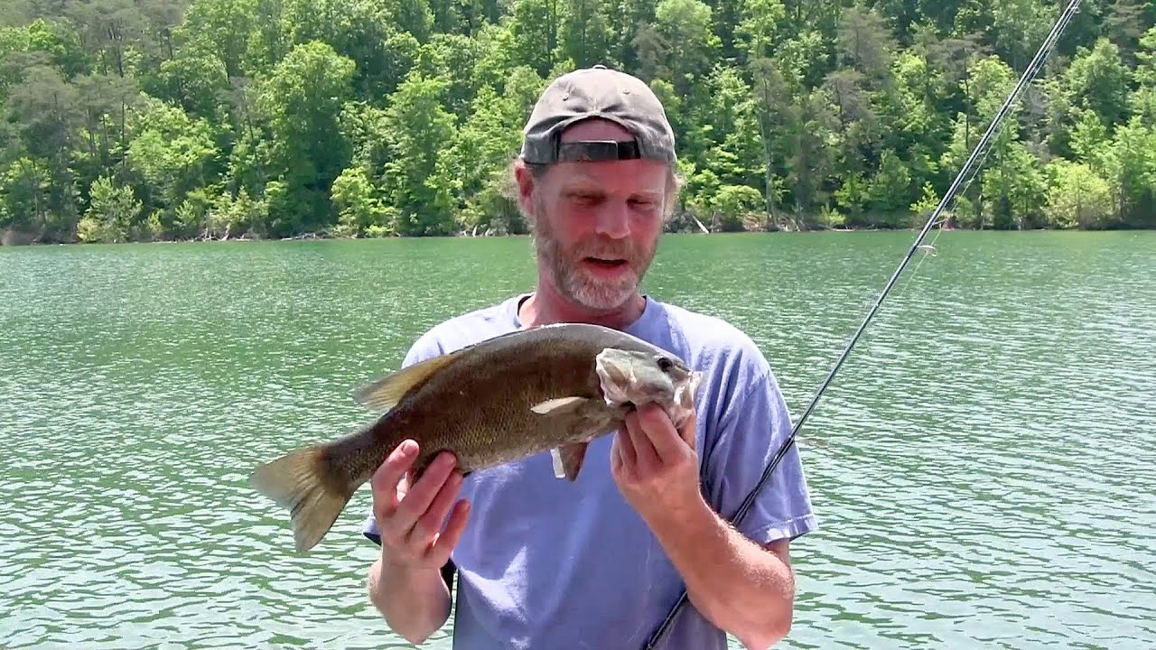 Fishing norris lake tennessee youtube for Norris lake fishing