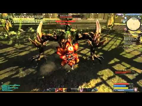 Raiderz Gameplay Master Of Garden