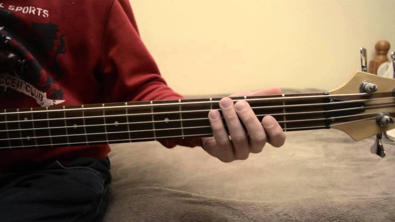 электрический партии на бас гитаре чертовски собака домохозяйка