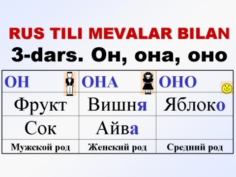 MEVALAR-3. Фрукты-3. Род. Мужской, женский, средний.
