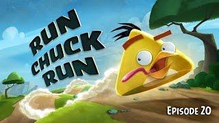 Run Chuck Run | Angry Birds Toons - Ep 20, S 1