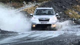 Subaru Forester 2014 - TestDrive TopGear - Dmitry Sokolov