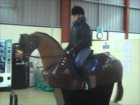 Otley College Equine Studies Student S Promotional Video