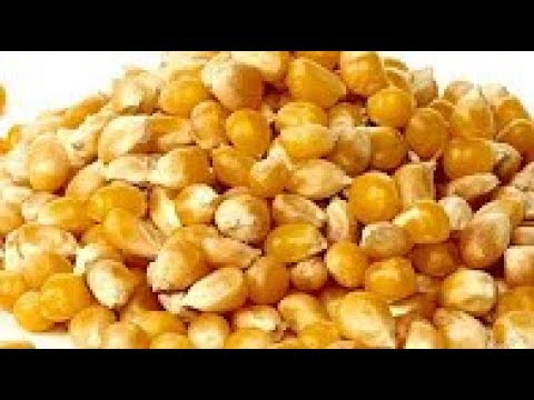 Poultry Feed Ingredients Rates We Use In Poultry Farming Of