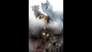 Коты Воители - Клип День,Ночь.