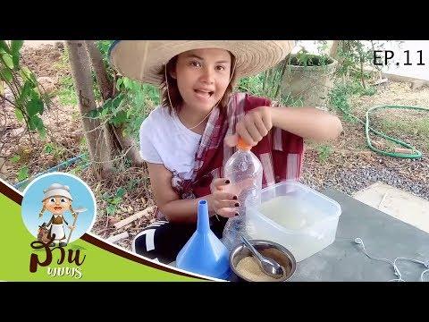 สวนพบพร | EP.11 |  ตั๊กแตน ชลดา พาทำจุลินทรีย์จากน้ำซาวข้าว