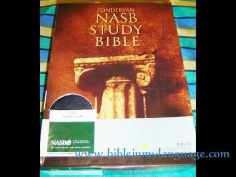 NASB STUDY BIBLE / New American Standard / Bonded Leather