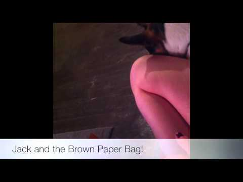 Jack and the Brown Paper Bag!
