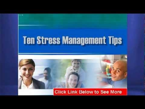 Stress Management PPT Presentation: Helping Employees With A PPT Presentation On Stress