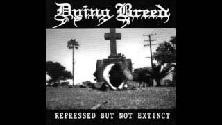 Watch Dying Breed Apportioned Grief video