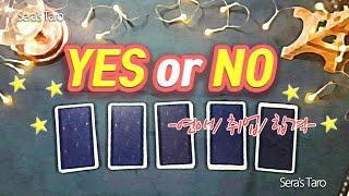 [오늘의 타로] YES or NO (연애/취업/합격)