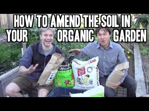 How to Amend the Soil in Your Organic Garden