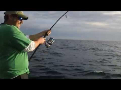 Best Tuna Compilation Cape Cod Nov 2014