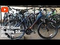 2018 Giant Sedona DX disc