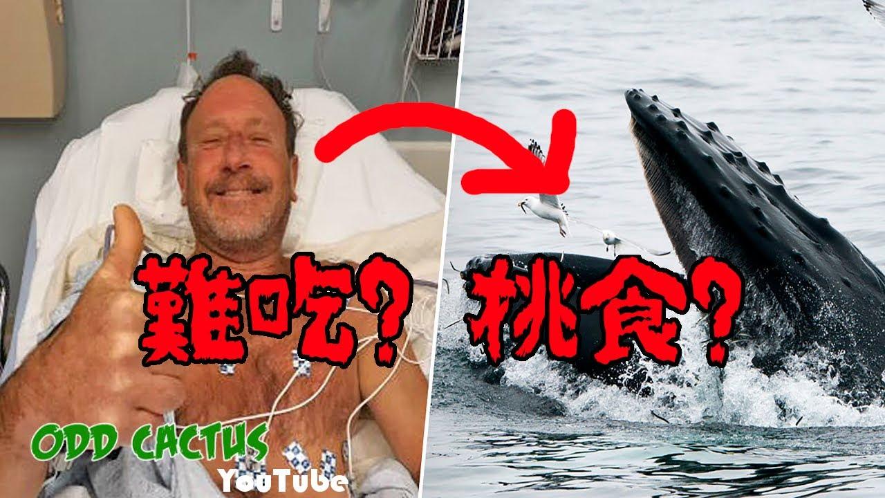 史上第一位被大鯨魚吐出來存活的男子