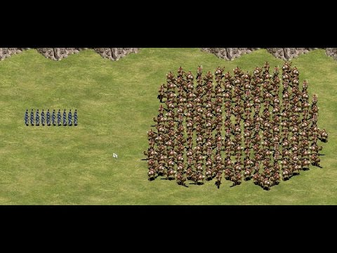 40 Elite Teutonic Knights vs 200 Mamelukes