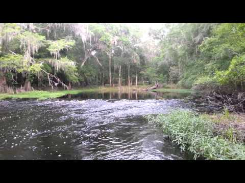 North Central Florida Paradise