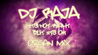 DJ Raja - Its Not Right But Its Okay ( Organ Mix )
