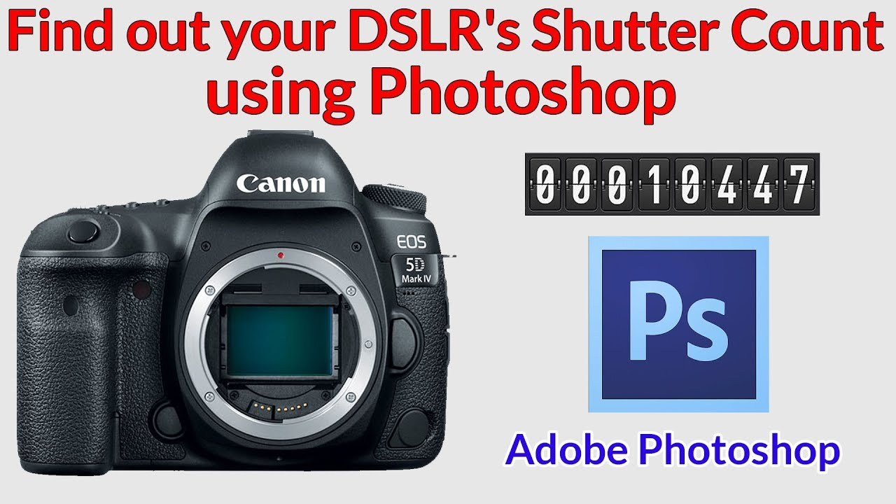 How to Check a DSLR's Shutter Count using Photoshop  Works for Nikon,  Canon, Pentax, Samsung etc