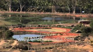 Devotees at Chandragiri Hill, Shravanabelagola, Karnataka