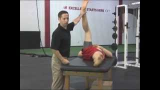 FST Lower Lower Body - How to Assess Alignment by Looking at the Hamstrings
