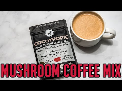 What you ought to Learn About Mushroom Coffee