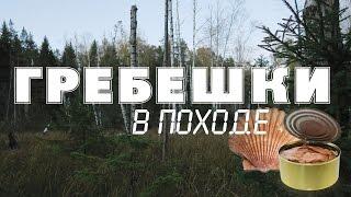 Гребешки в походе(В этом видео мы попробуем приготовить в походных условиях такой необычный продукт, как морские гребешки...., 2016-12-06T18:09:11.000Z)