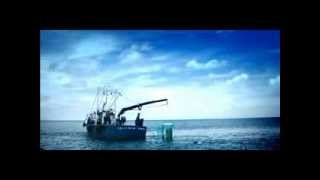 Cage Diving with Sharks Funny Commercial TV Advert from Irish National Lottery & Lotto Ireland 2010