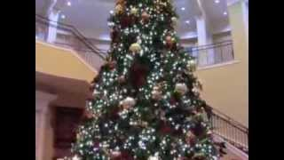High Point University Christmas Decorations