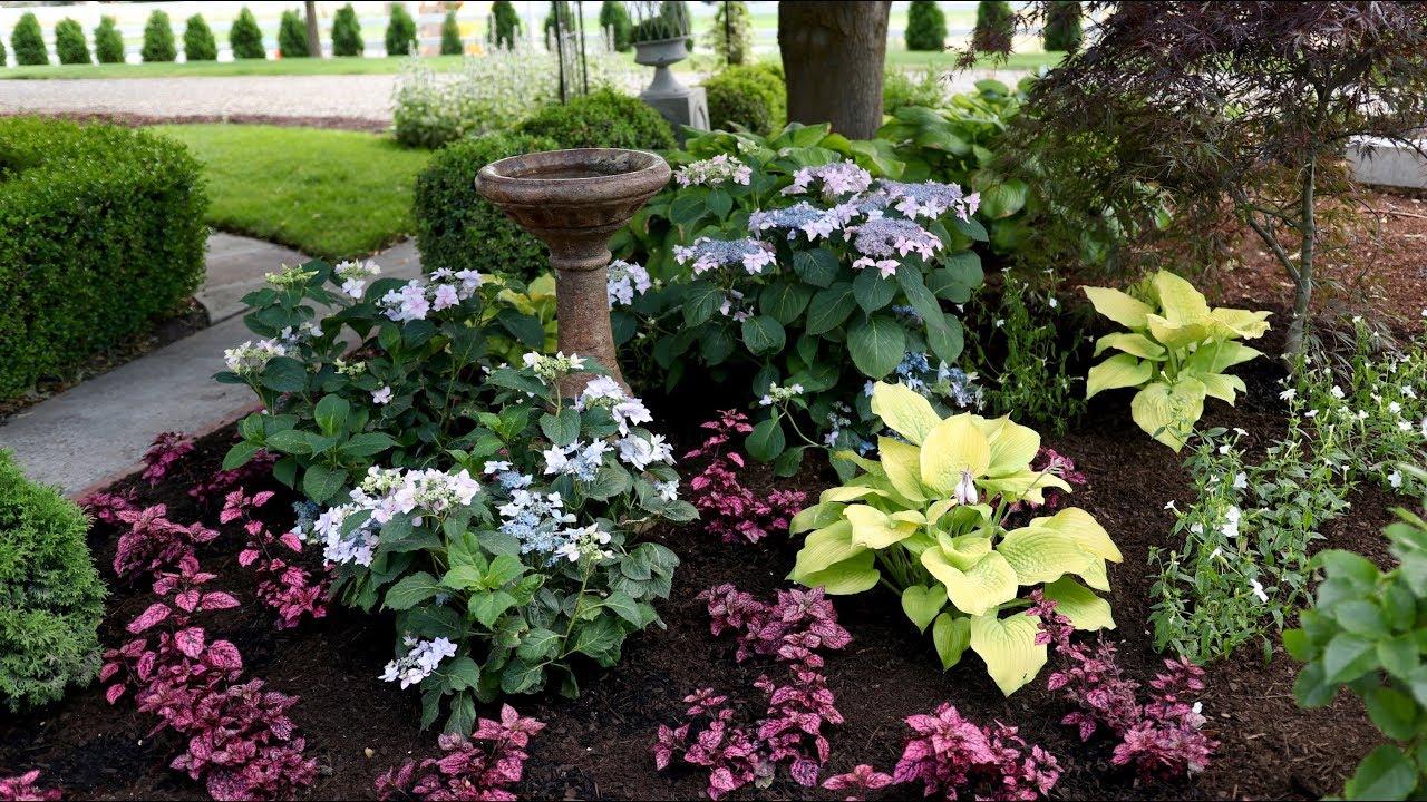 landscape makeover pt 2 garden