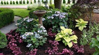 landscape makeover pt 2 garden answer