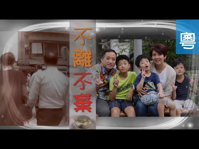 電視節目 TV1580 不離不棄 (HD粵語) (台灣系列)