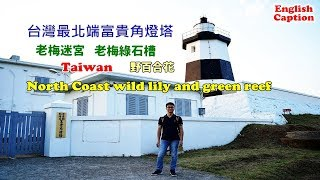 [台灣自由行景點攻略] 帶你搭公車到富貴角看野百合,還有老梅迷宮、綠石槽、燈塔,這樣玩就對了 Video