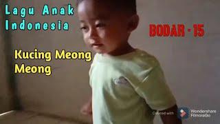 Kucing Meong Meong (Lagu Anak Indonesia