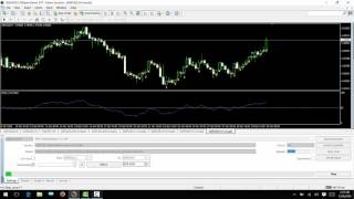 Best RSI EA Forex Master no loss 100% Guranteed