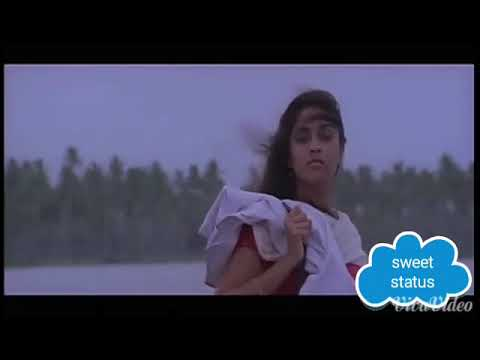 Best Love Bgm Scene From Sakhi