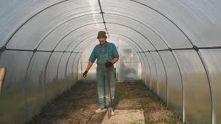Фантастический способ, повысить урожайность в теплице ч.1