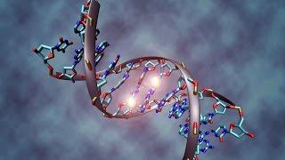 25 Facts You Might Not Know About DNA