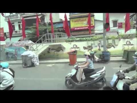 Vietnam Trend Analysis