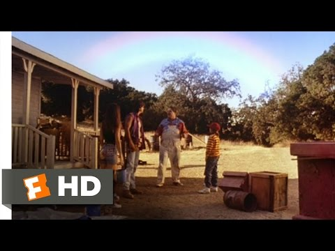 Leprechaun 311 Movie   End of the Rainbow 1993 HD