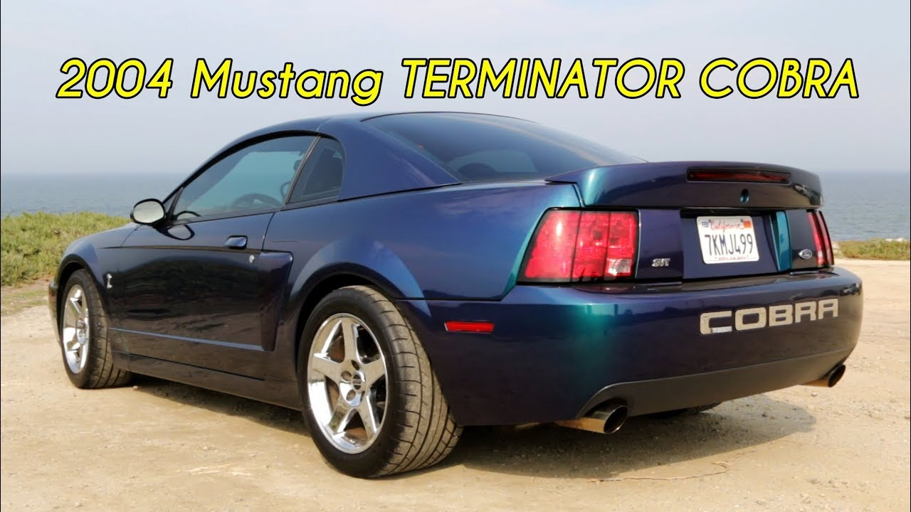 Mystichrome mustang terminator cobra review i like american cars