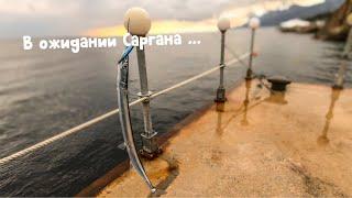 ЧУДО рыба САРГАН Рыбалка с пирса на Черном море Ставрида Скорпена
