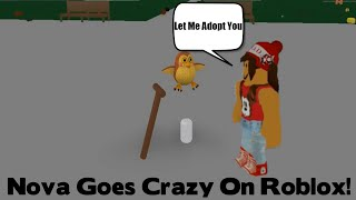 nova goes crazy on a roblox game