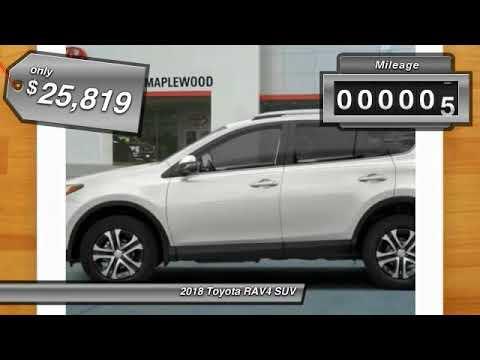 2018 Toyota RAV4 LE Maplewood, St Paul, Minneapolis, Brooklyn Park, MN J10322