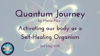 Quantum Journey - Our body as a Self-Healing Organism
