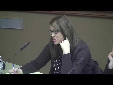 April 2, 2018 ISD 279 School Board Special Meeting, Superintendent Finalist Interviews