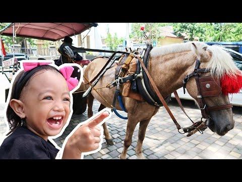 Naik Delman Istimewa ❤ Lagu Anak Populer