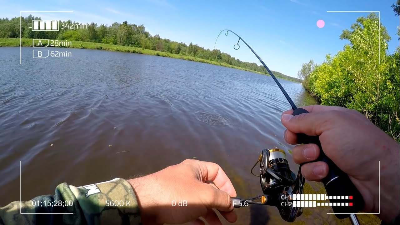 Рыбалка с первой бровки канала имени Москвы на спиннинг